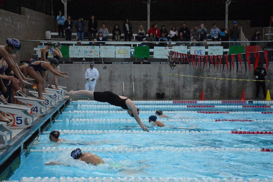 Lee Nichols '20 dives into the pool during a relay for the Wolverines. Credit: Luke Casola/Chronicle