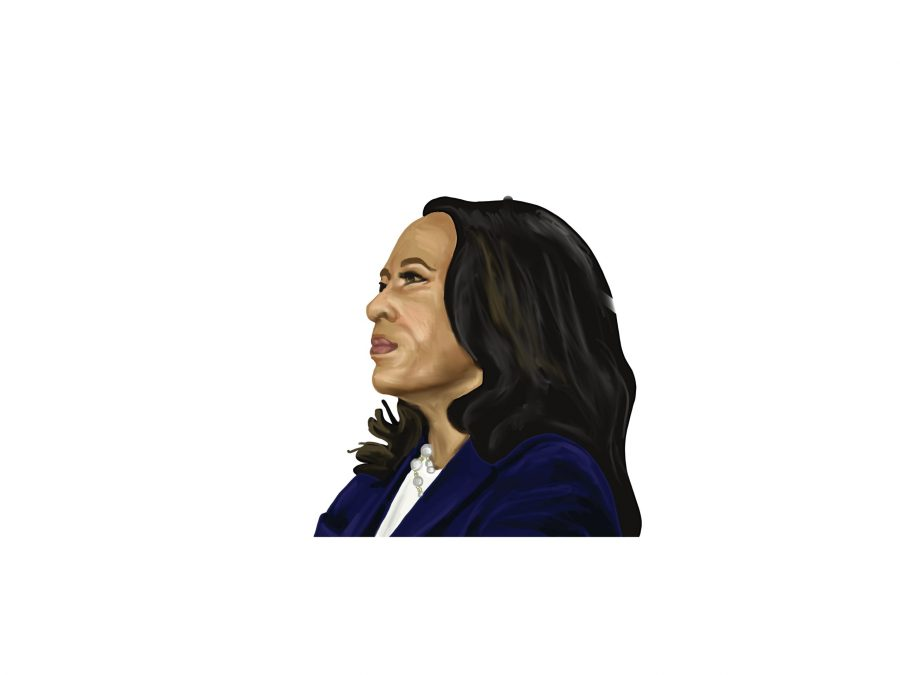 Vice President Kamala Harris is the first woman, African-American and Asian-American to hold this high elected office.