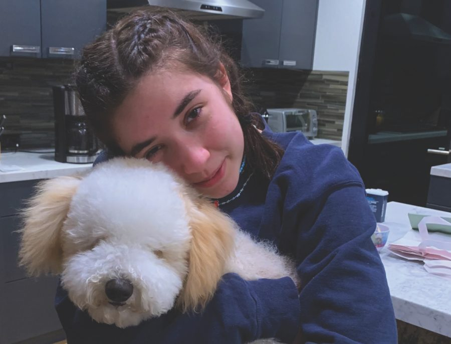 Olivia Rahhal '23 cuddles her pet sheepadoodle.