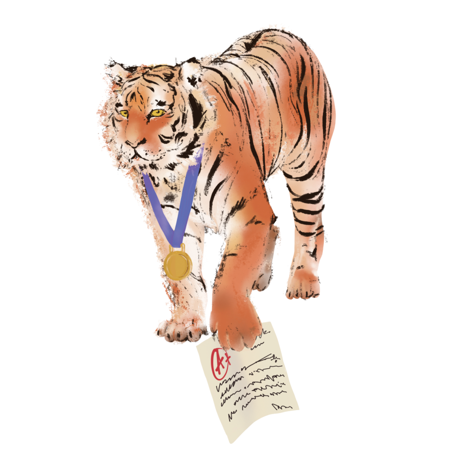 A tiger representing a top competitor in the metaphorical jungle of high school growls while holding an A+ paper.