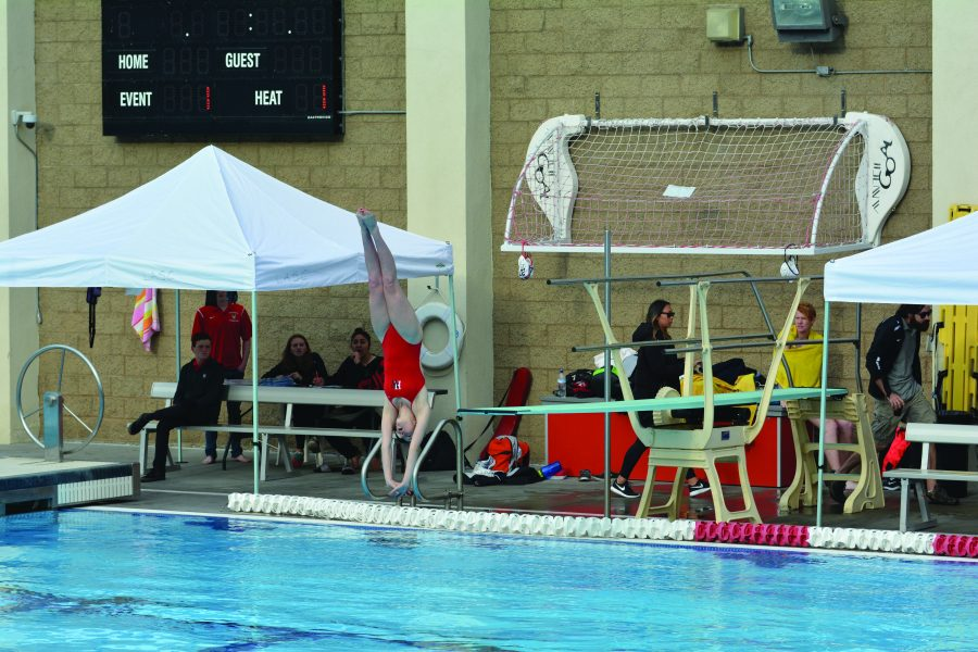 Cami Katz '16 dives into the Copses family pool during a meet. Credit: Emily Rahhal/Chronicle