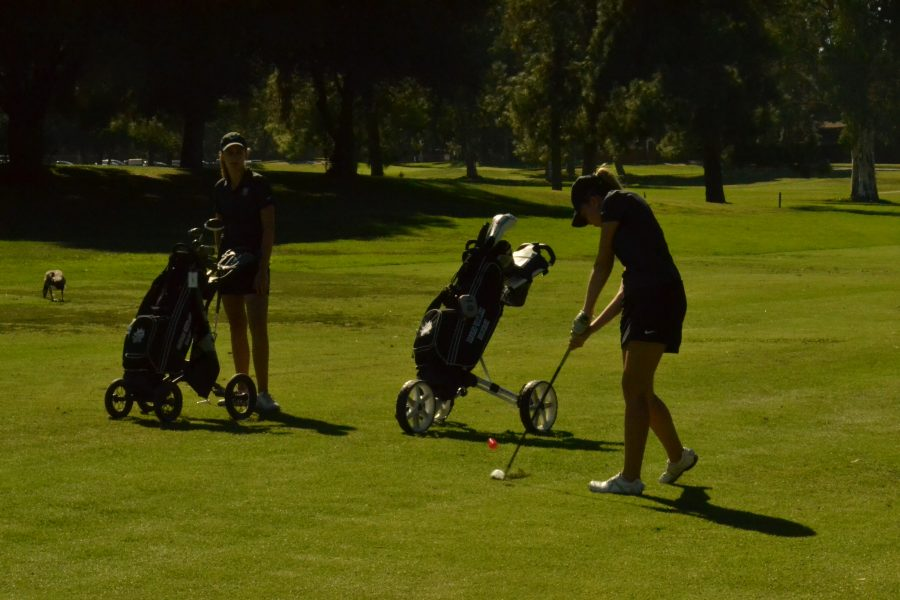 A golf player swings at a meet versus Louisville at the Encino Golf Course. Photo Credit: Adam Yu '18