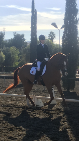 Sophia Ekstrand '20 and her horse Esteban compete. With Esteban, she competes at the varsity level and placed third overall in the team's third competition. She finished with 96 points. Printed with the permission of Sophia Ekstrand.
