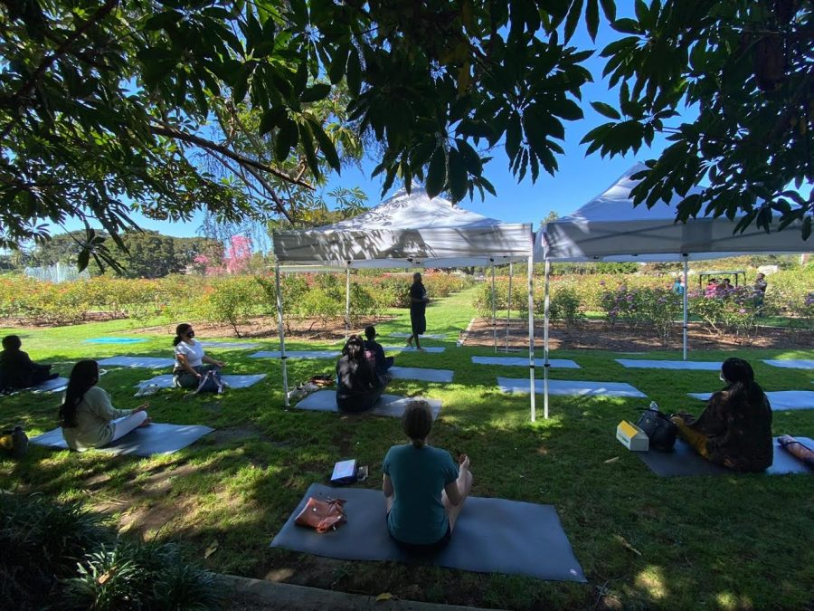 Students partake in an outdoor trauma-informed yoga class, arranged by the Jenesse Center.